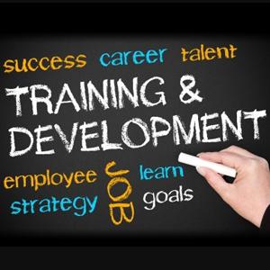Diseña tu plan de formación